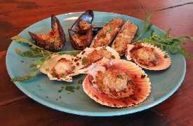 Gratinati di pesce Ristorante Trattoria Del Porto da Eugenio Cattolica