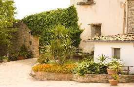 Foto principale Agriturismo Parco Vecchio