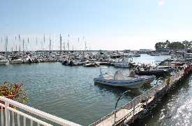 Ristorante Cala Diomede Manfredonia - Foto 19