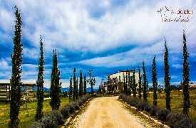 Foto principale Terra Del Vent