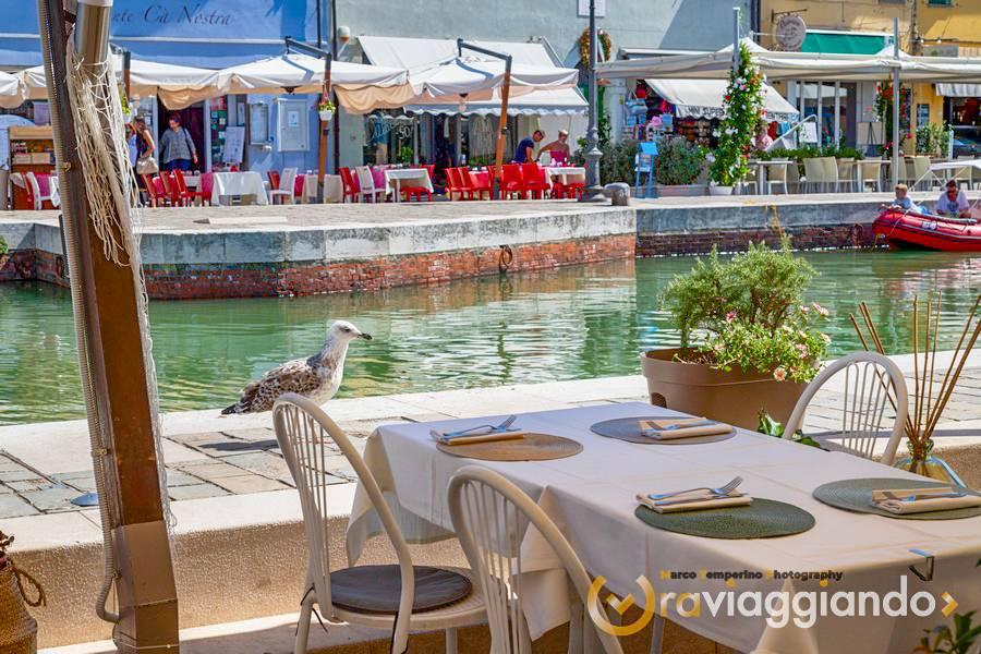 Ristorante Mediterraneo Da Berto Cesenatico foto 4