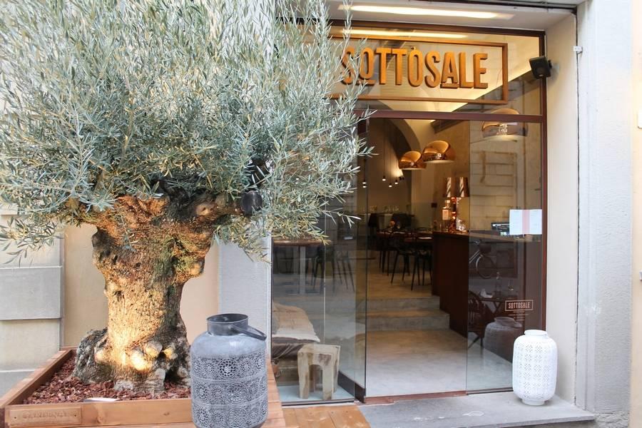 Ulivo del benvenuto Sottosale Hostaria Italiana Arezzo